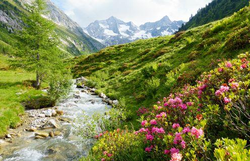 Zillertal - Archiv TVB Mayrhofen©Paul Wechselberger